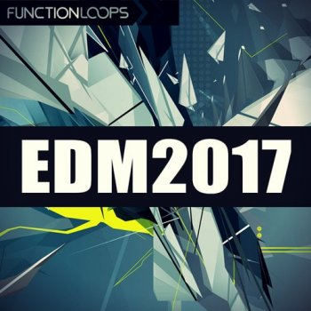 Сэмплы Function Loops EDM 2017