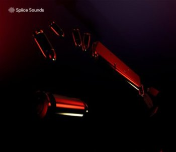 Сэмплы Splice Sounds Salva Clips Samples