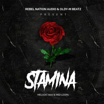 Сэмплы Rebel Nation Audio Stamina