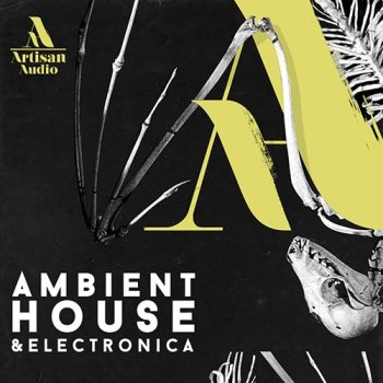 Сэмплы Artisan Audio Ambient House and Electronica