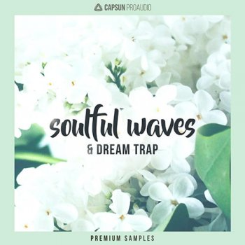 Сэмплы CAPSUN ProAudio Soulful Waves and Dream Trap