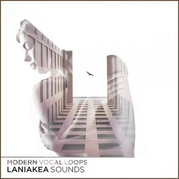 Сэмплы Laniakea Sounds Modern Vocal Loops