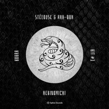 Сэмплы Splice Sounds SteLouse and Ahh Ooh Hebinomichi Kobra Kit