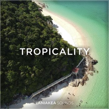 Сэмплы Laniakea Sounds Tropicality