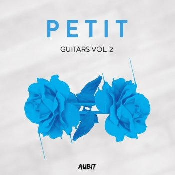Сэмплы Aubit Petit Guitars Vol.2