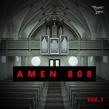 Сэмплы Regal Loops AMEN 808 Vol.3