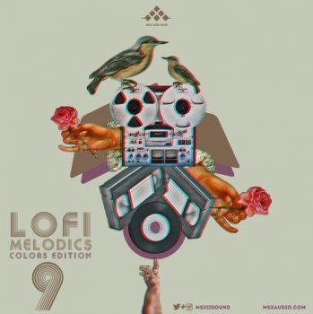 Сэмплы MSXII Sound Design LoFi Melodics Vol.9 Colors Edition