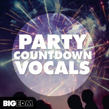 Сэмплы Big EDM Party Countdown Vocals