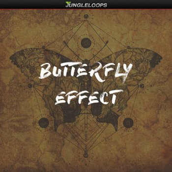 Сэмплы Jungle Loops Butterfly Effect