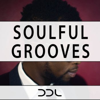 Сэмплы Deep Data Loops Soulful Grooves