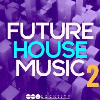 Сэмплы Audentity Records Future House Music 2
