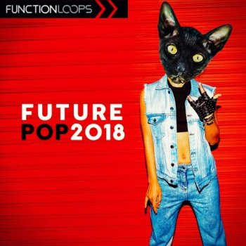 Сэмплы Function Loops Future Pop 2018