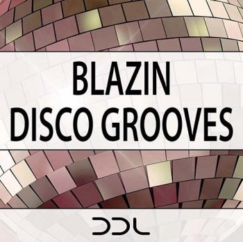 Сэмплы Deep Data Loops Blazin Disco Grooves