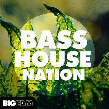Сэмплы Big EDM Bass House Nation