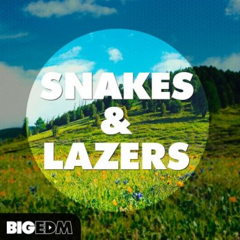 Сэмплы Big EDM Snakes And Lazers