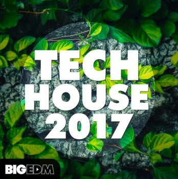 Сэмплы Big EDM Tech House 2017