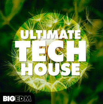 Сэмплы Big EDM Ultimate Tech House