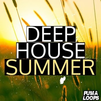 Сэмплы PUMA Loops Deep House Summer