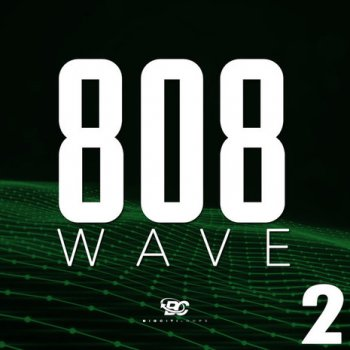 Сэмплы Big Citi Loops 808 Wave 2