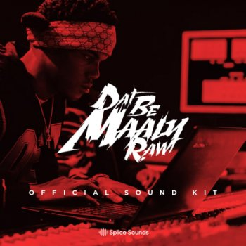 Сэмплы Splice Sounds Maaly Raw Official Sound Kit