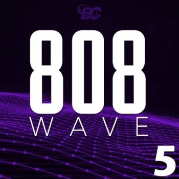 Сэмплы Big Citi Loops 808 Wave 5