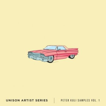 Сэмплы Unison Artist Series Peter Kuli Samples Volume 1
