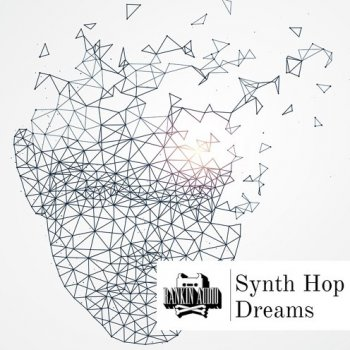 Сэмплы Rankin Audio Synth Hop Dreams