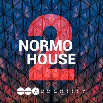 Сэмплы Audentity Records Normo House Vol.2