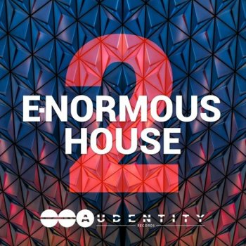 Сэмплы Audentity Records E-Normous House 2