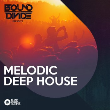 Сэмплы Black Octopus Sound Melodic Deep House