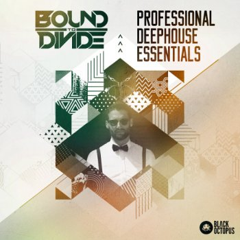 Сэмплы Black Octopus Sound Professional Deep House Essentials