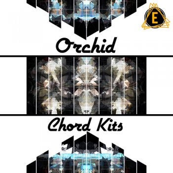 Сэмплы Electronisounds Orchid Chord Kits