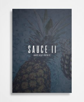 Пресеты The Kit Plug Sauce II Gross Beat Presets