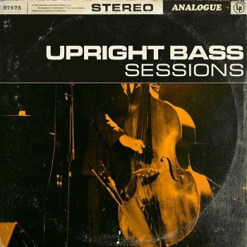 Сэмплы Touch Loops Upright Bass Sessions