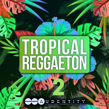 Сэмплы Audentity Records Tropical Reggaeton 2
