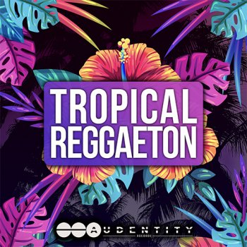 Сэмплы Audentity Records Tropical Reggaeton