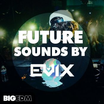 Сэмплы Big EDM Future Sounds By Evix