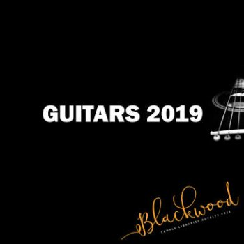 Сэмплы гитары - Blackwood Samples Guitars 2019