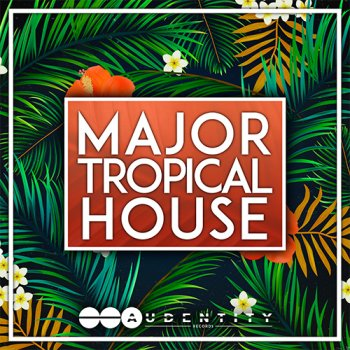 Сэмплы Audentity Records Major Tropical House