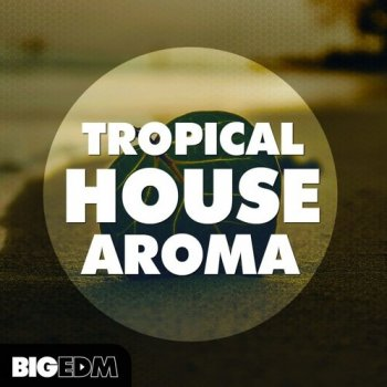 Сэмплы Big Edm Tropical House Aroma