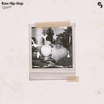 Сэмплы Sample Magic Raw Hip-Hop