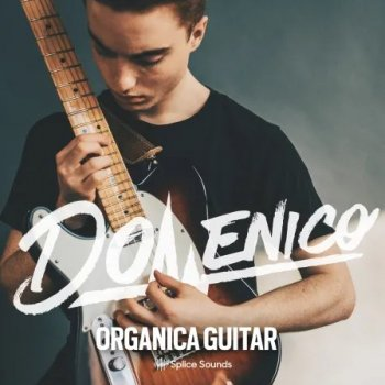 Сэмплы Splice Sounds DOMENICO: Organica Guitar