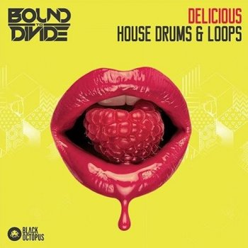 Сэмплы Black Octopus Sound Delicious House Drums and Loops