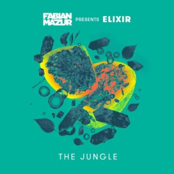 Сэмплы Splice Sounds Fabian Mazur The Jungle