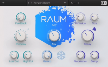 Native Instruments Raum v1.0.0 x64