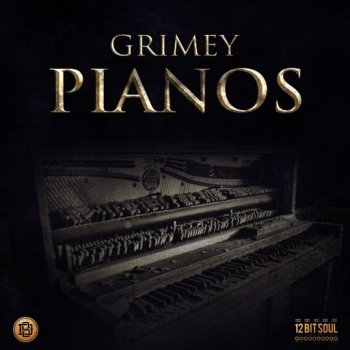 Сэмплы Divided Souls Grimey Pianos