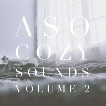 Сэмплы Splice Sounds Aso Cozy Sounds Vol. 2