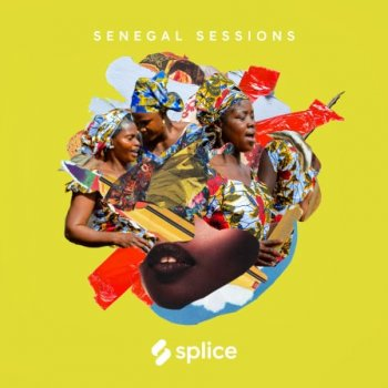 Сэмплы Splice Sessions Senegal Sessions