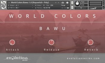 Библиотека сэмплов - Evolution Series World Colors Bawu v1.0 (KONTAKT)
