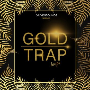 Сэмплы DRIVENSOUNDS Gold Trap Loops